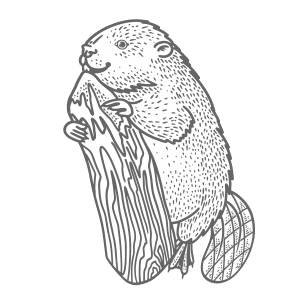 The Beaver Symbol